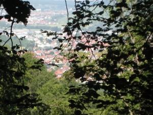 Ulm eo - zomer 2014 (20)