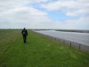 De zeedijk bij Lauwersoog